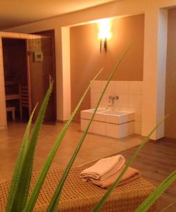 Hotel Bess Albersdorf | Saunaraum mit Dusche im Haupthaus